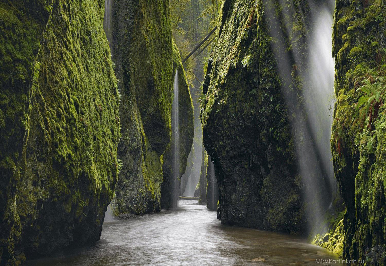 ущелье в каньоне