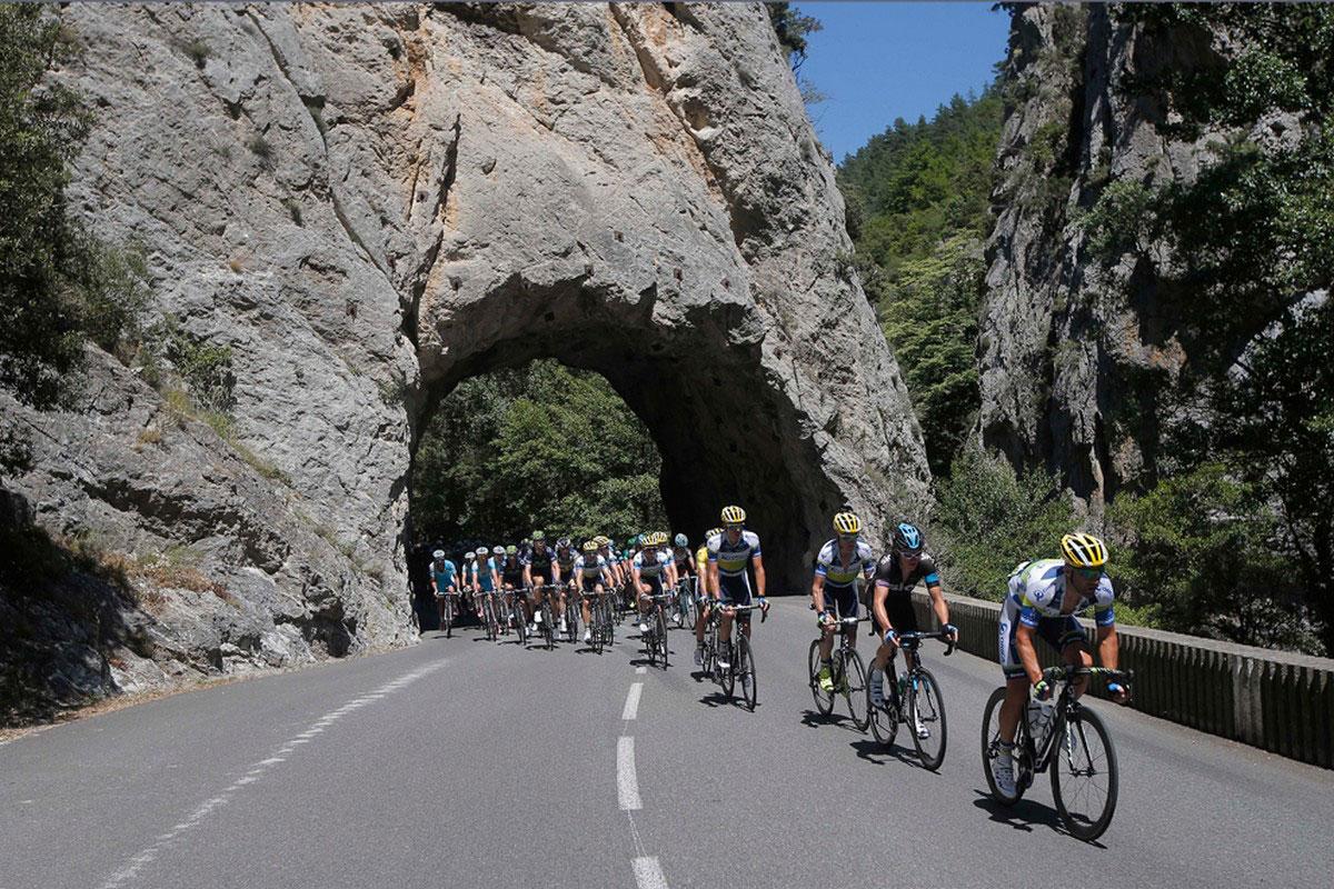 Велогонщики на трассе во Франции