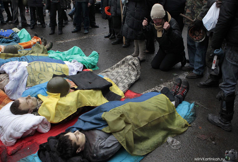 безжизненные тела активистов