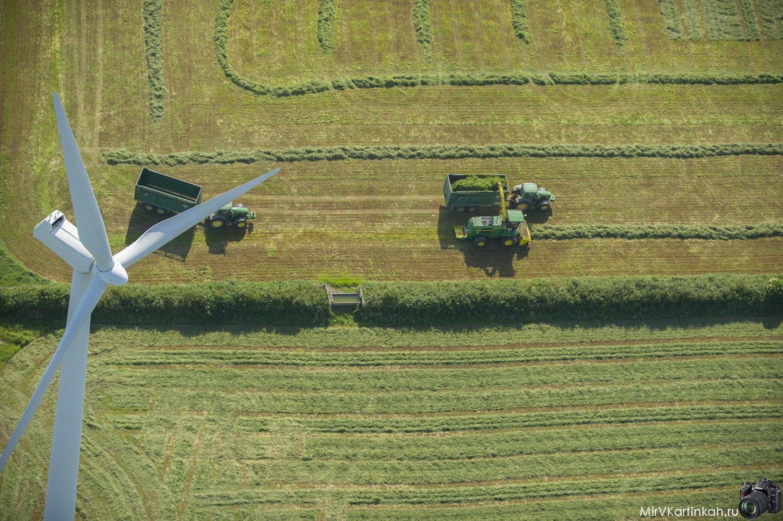 фермеры в поле