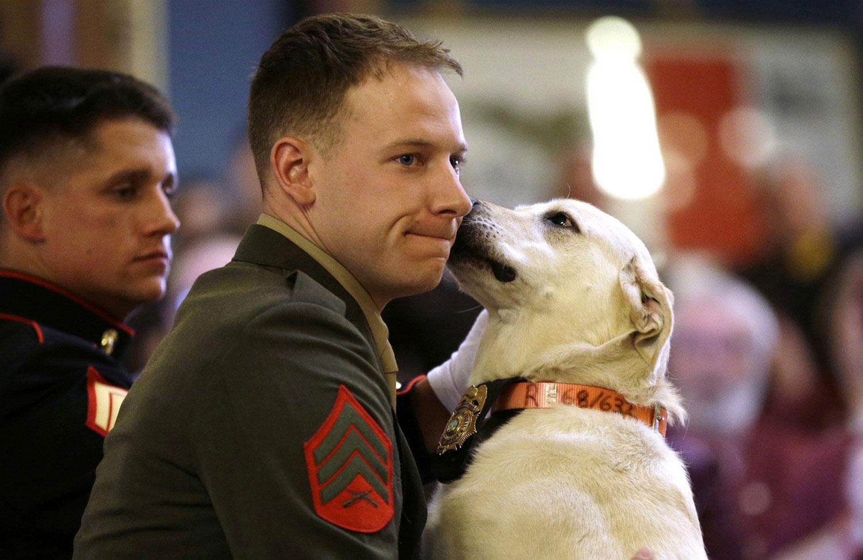 военнослужащий с собакой