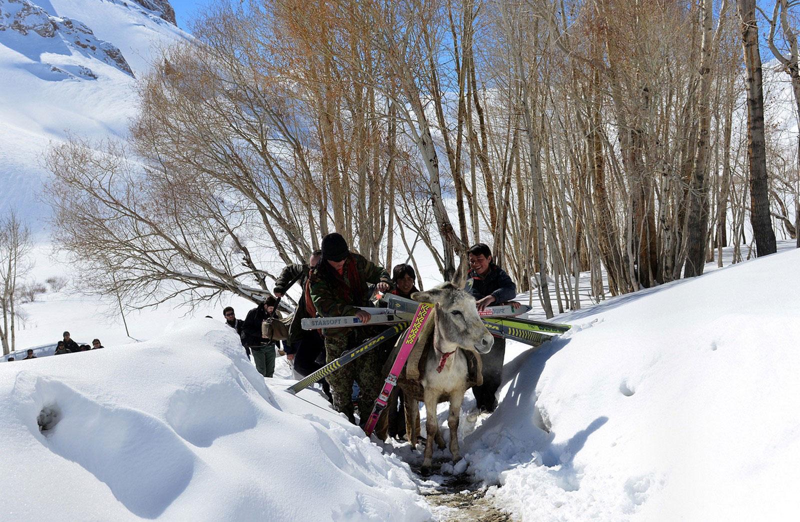 ежегодные гонки на лыжах в горах Гиндукуш