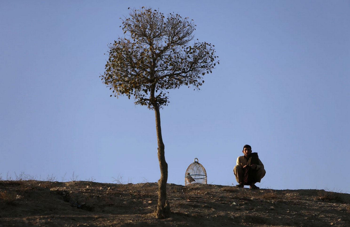 Афганец сидит на холме в Кабуле, фото