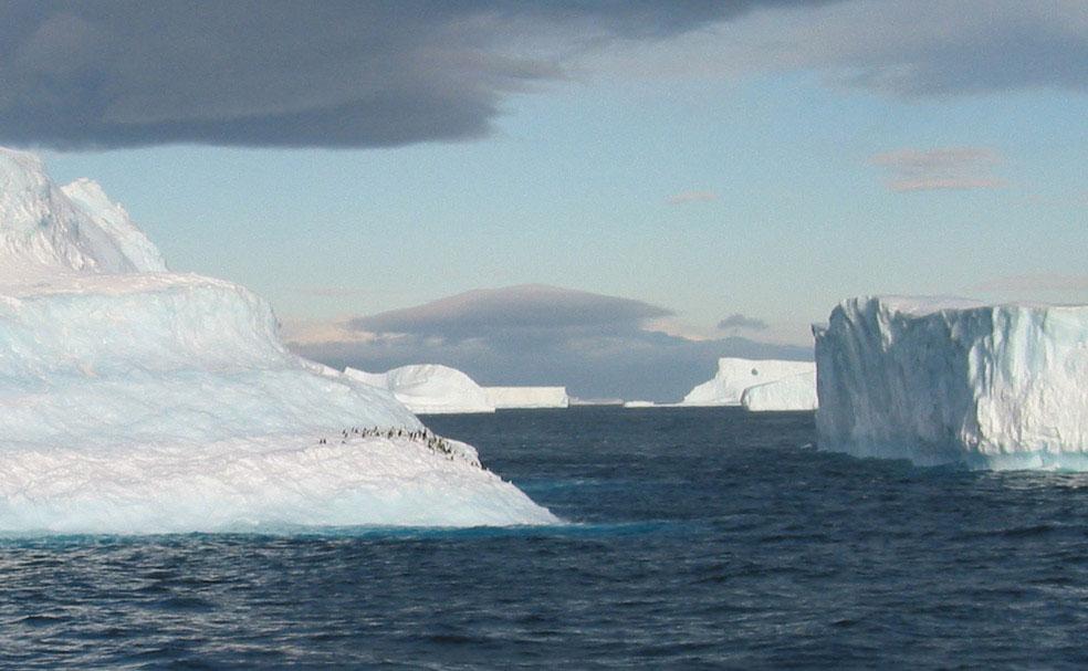 Пингвины на айсберге в Антарктиде, фото