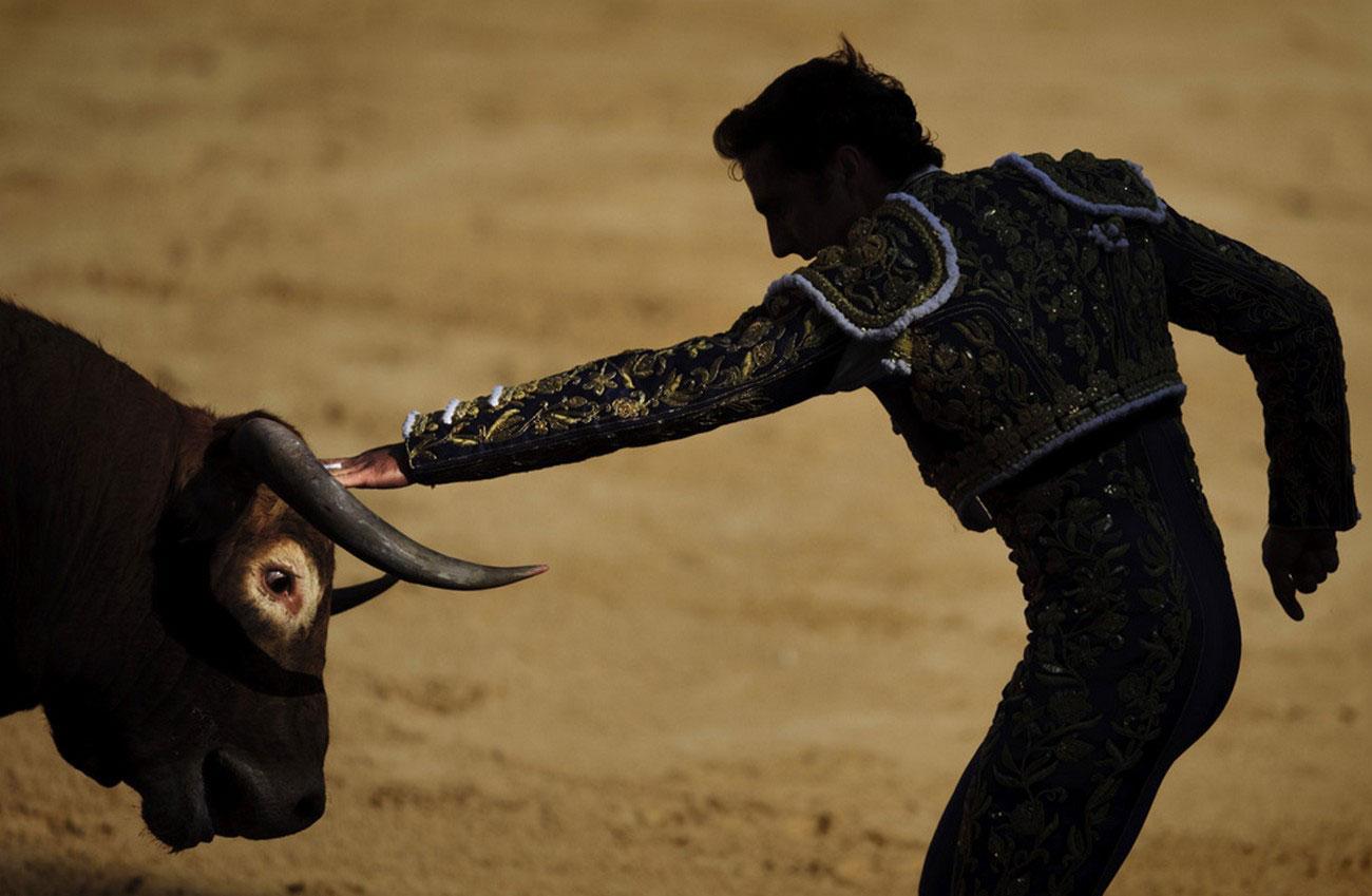 тореадор и бык в Испании на корриде