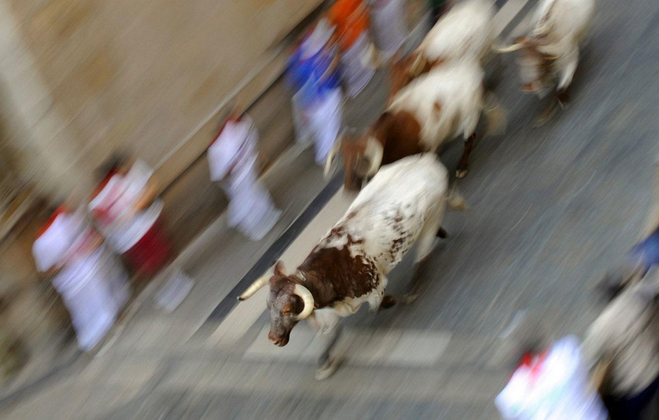 боевые быки несутся по улицам Испании