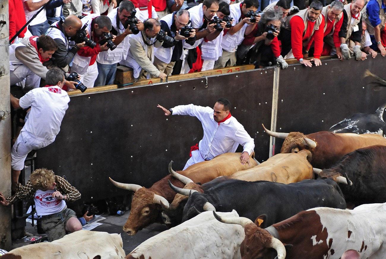 Фотографы снимают бегунов и быков