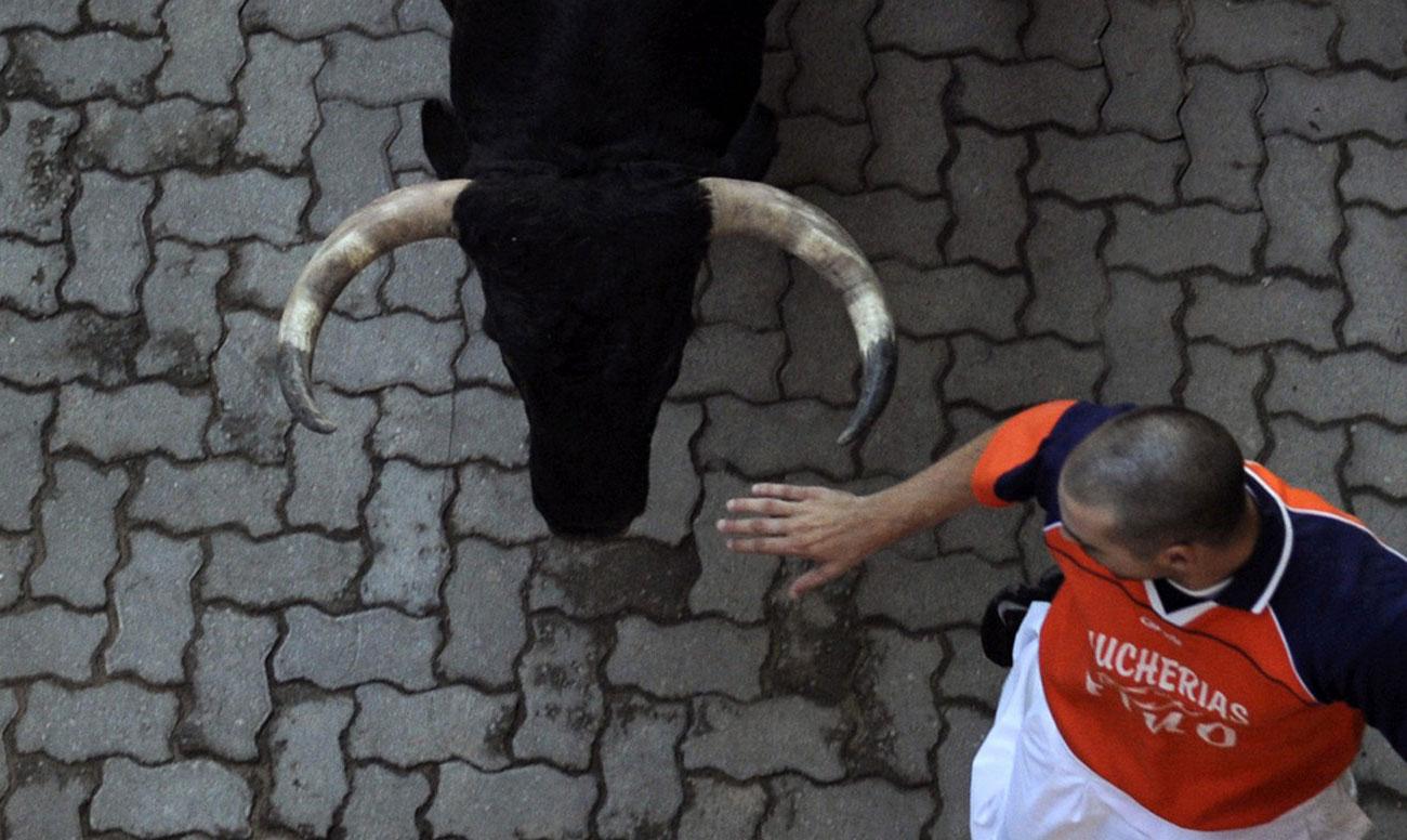 спасение от рогов быка, фото
