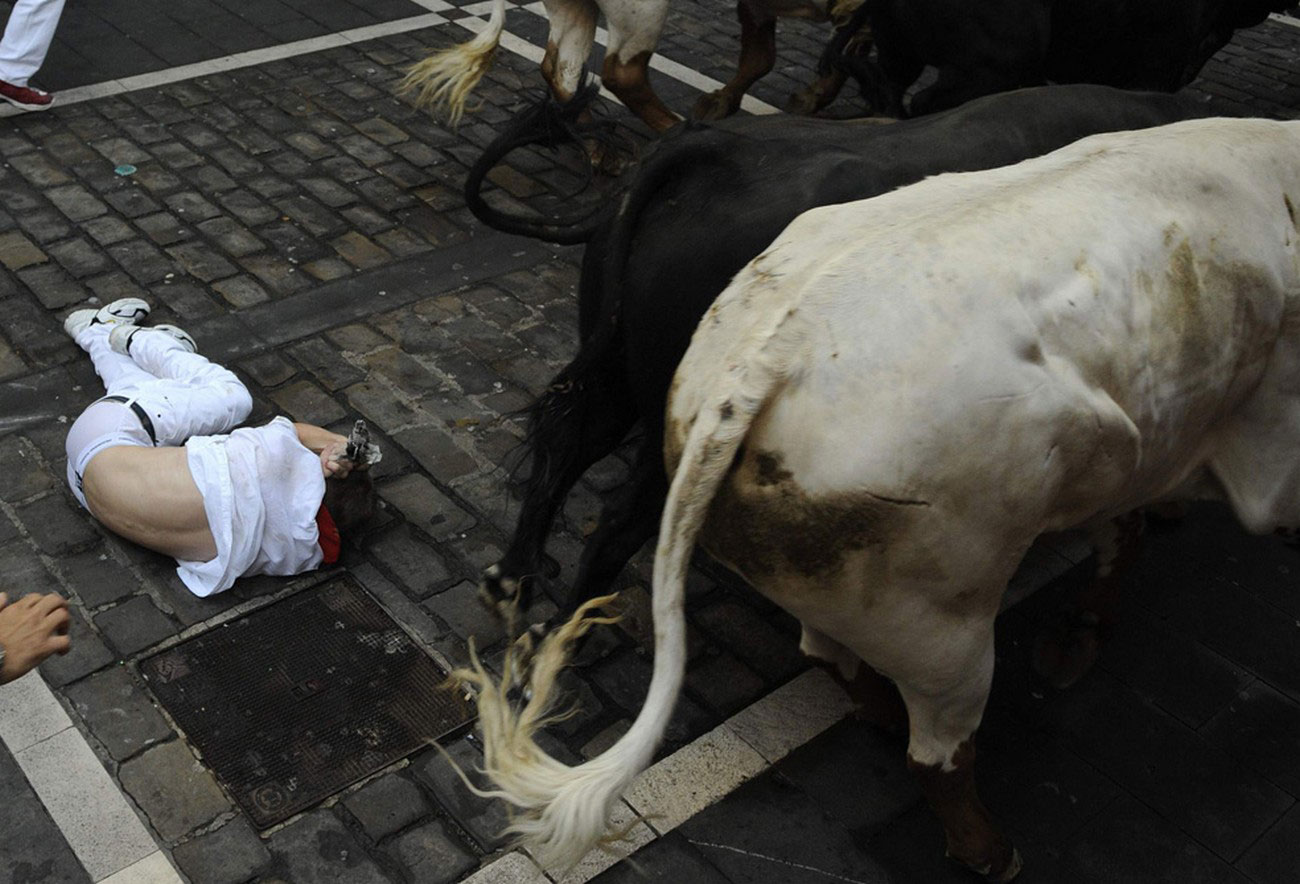 быки на корриде в Испании