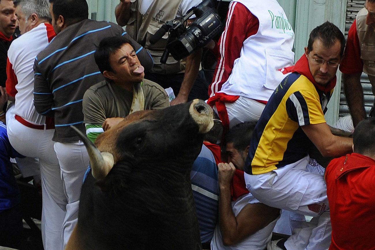 боевой бык забодал человека