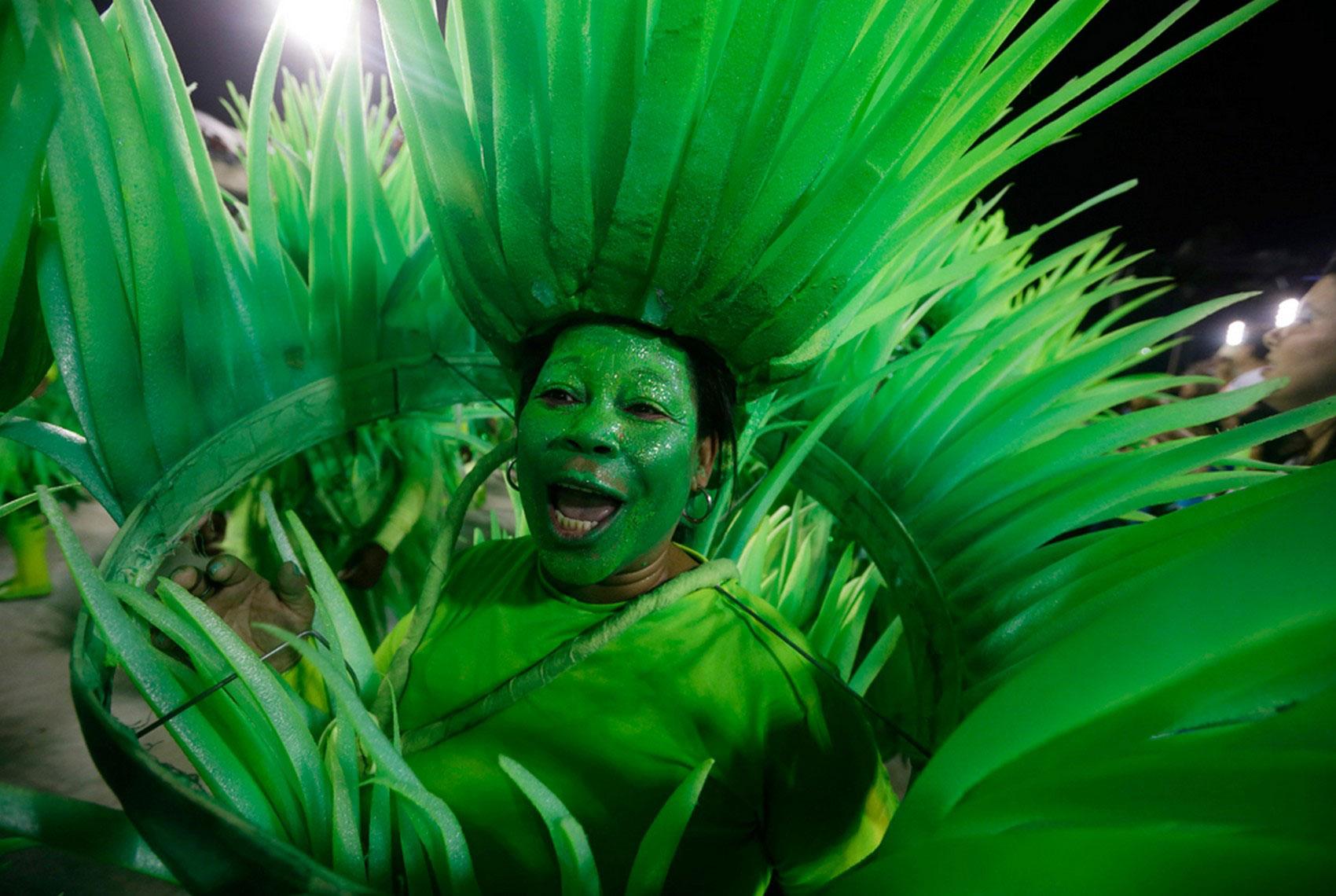 Бразильский карнавал 2013, фото