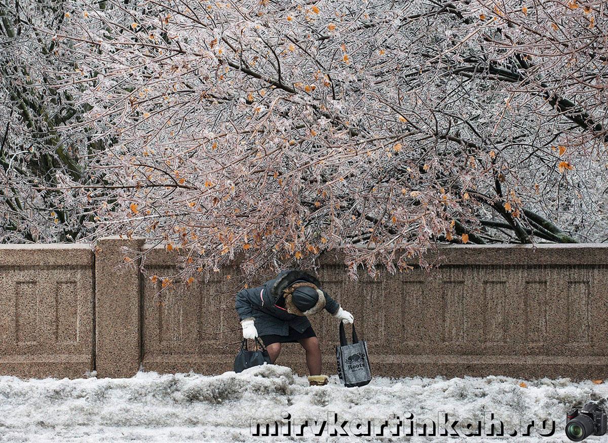 женщина проходит под ветвями дерева