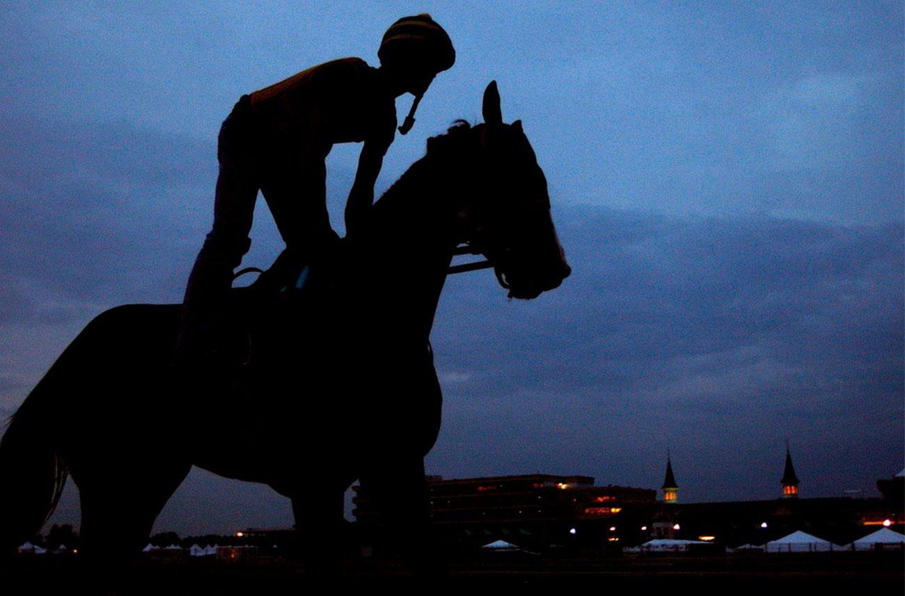 Лошадь и жокей на тренировке, фото