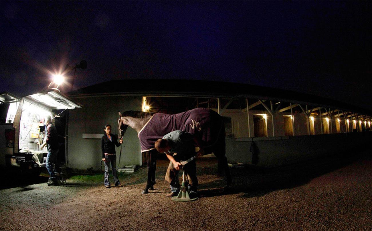 кузнец подковывает лошадь, фото