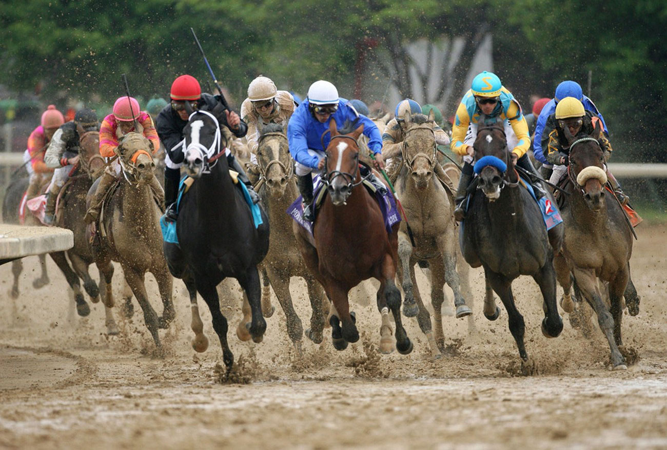 лошади заходят в поворот
