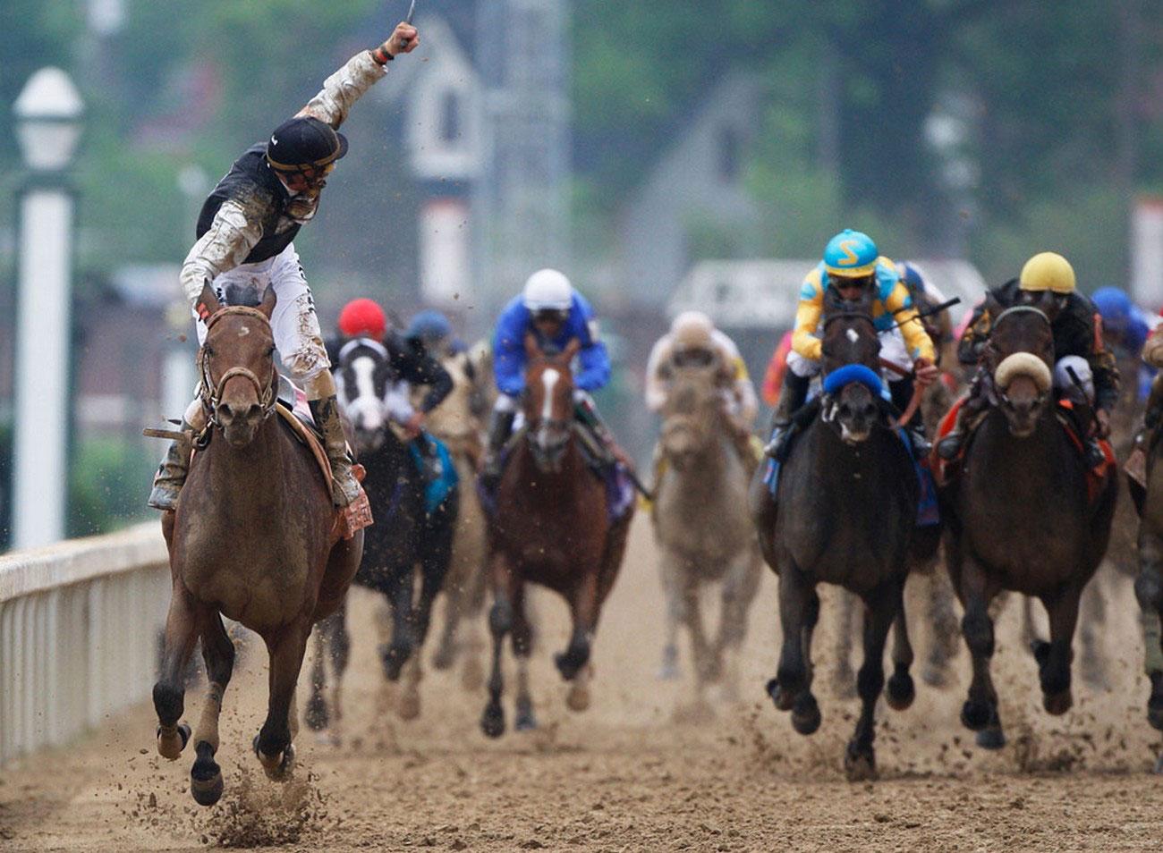 лошади на финишной прямой, фото
