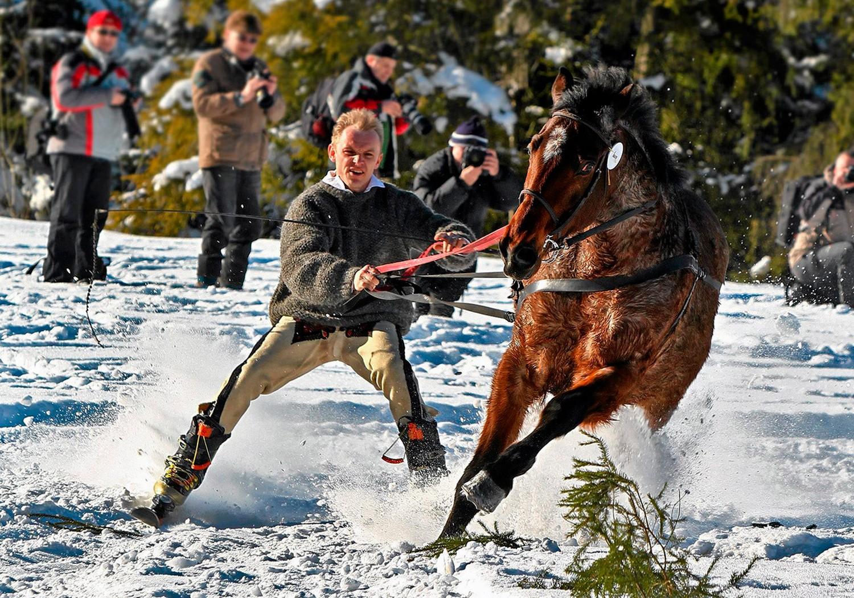 лыжник на лошади, фото