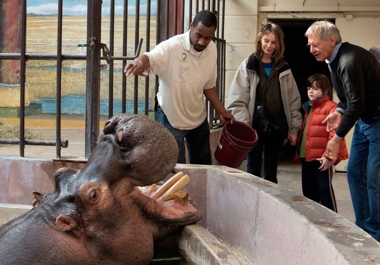 Бегемот в Смитсоновском Национальном Зоопарке, фото