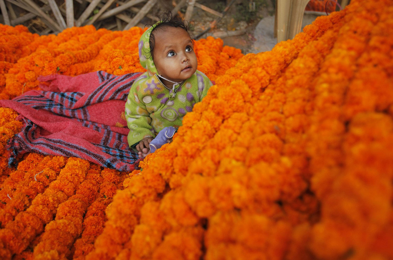 ребенок на цветах во время Дивали