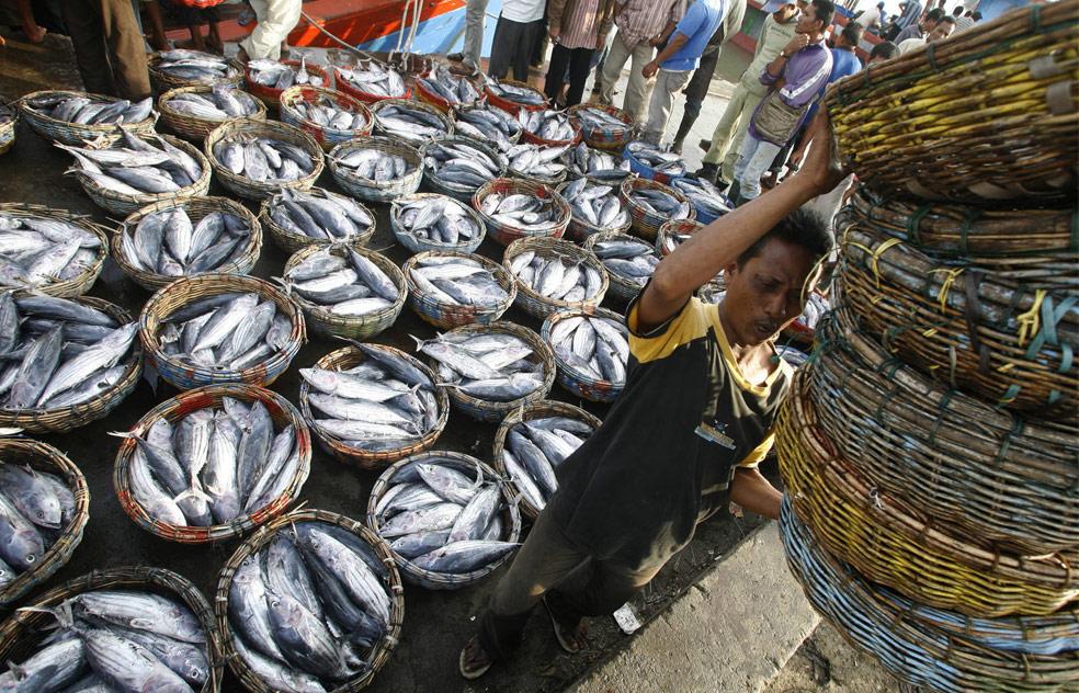 Рыбаки в порту в Банда-Ачех, фото из Индонезии