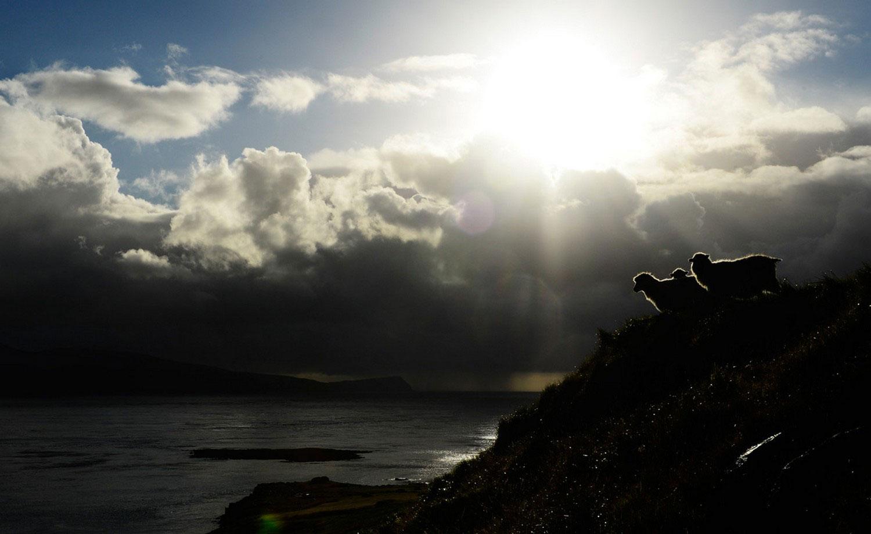 на острове Стреймойе (Streymoy), фото