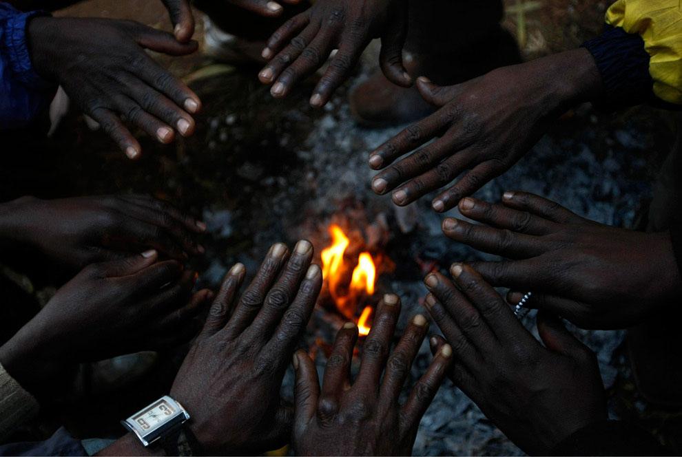 иммигранты африканские