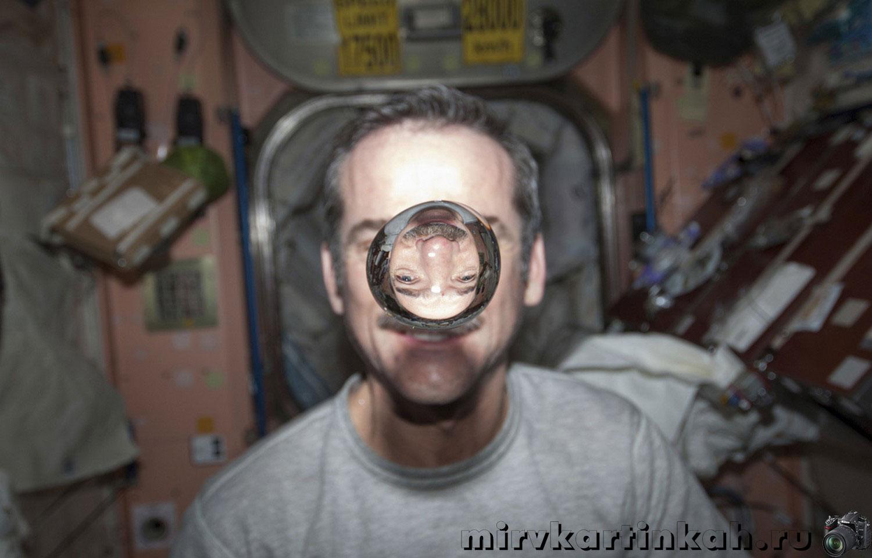 Канадский астронавт