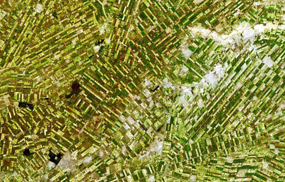 орошаемые поля, фото из космоса