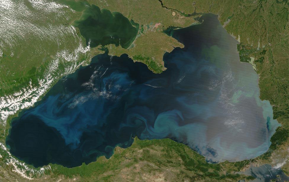 цветение фитопланктона, фото из космоса