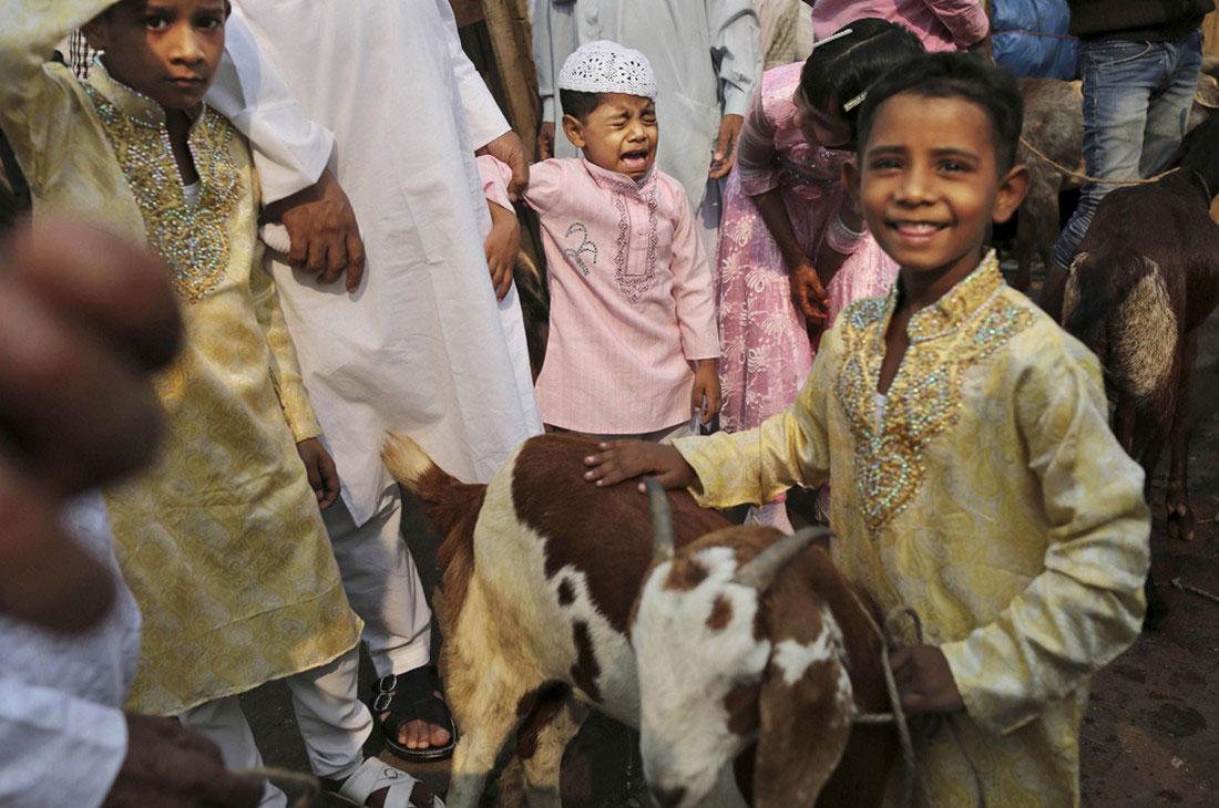 козу отец уводит на бойню у Джама Масджид, фото