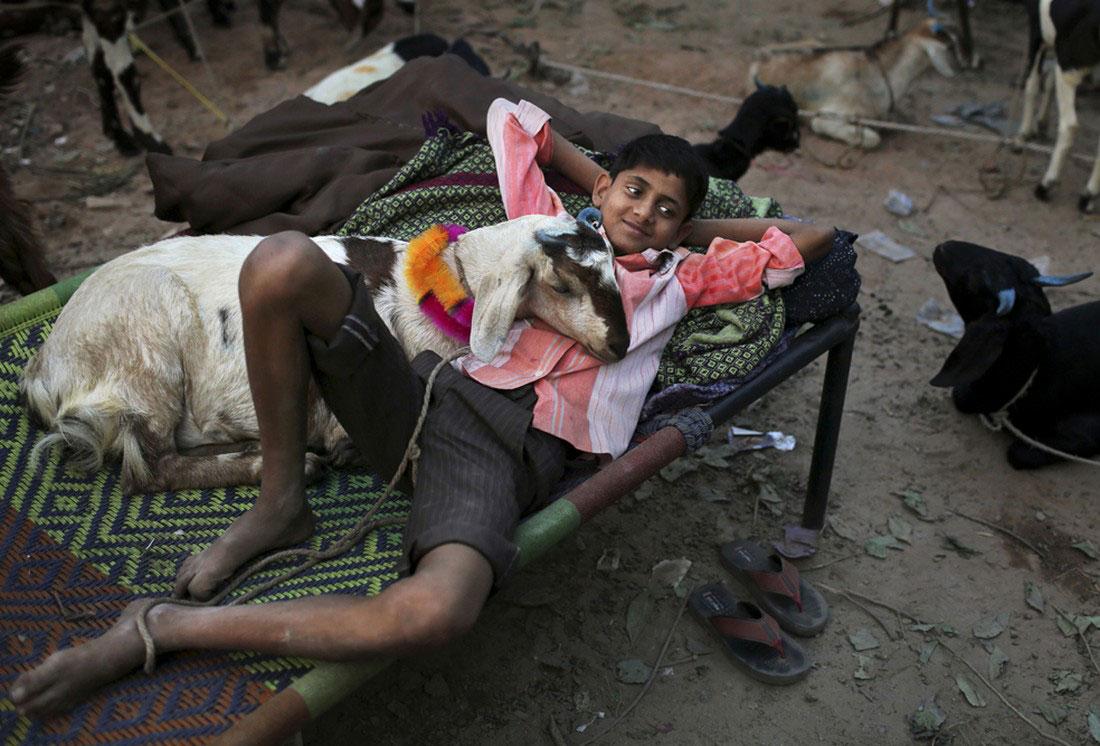 Мальчик лежит с козой, фото