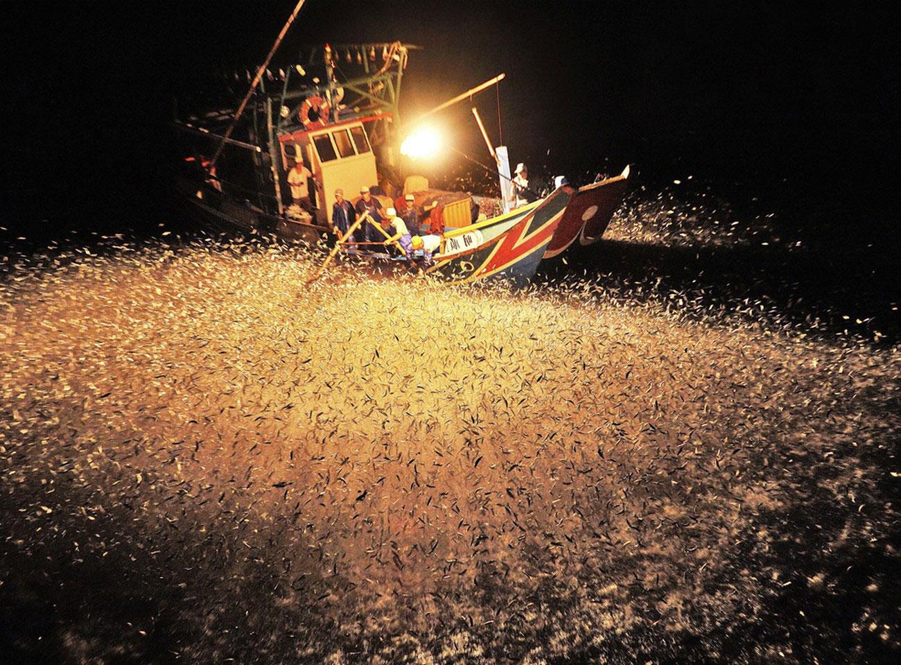 Рыбалка в ночное время, снимок