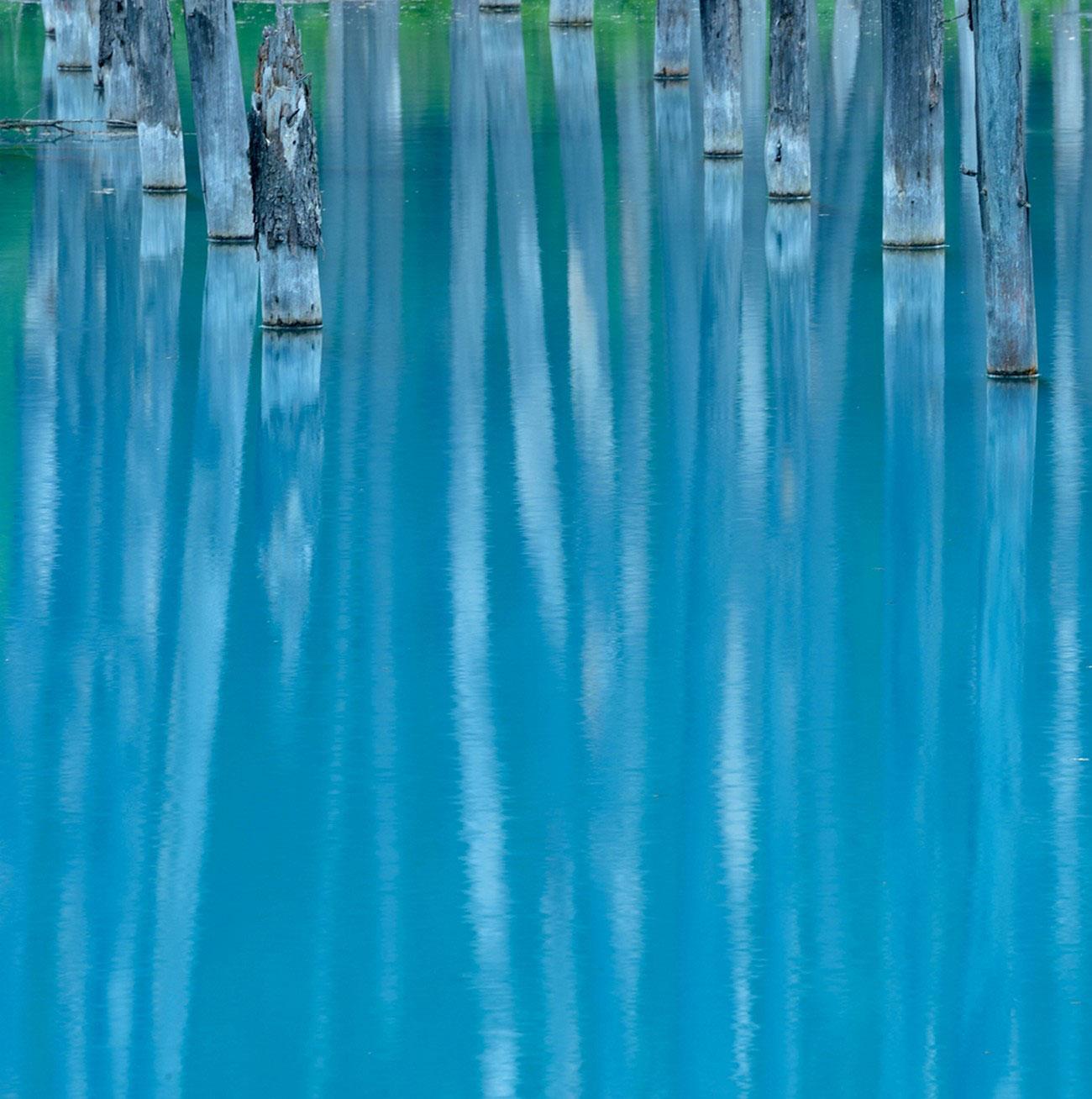 Деревья стоят в синем пруду, фото