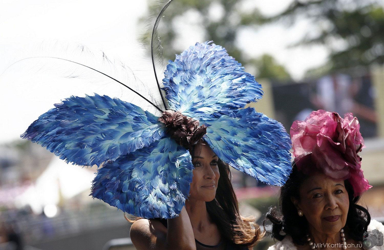 Женщины в декоративных шляпках