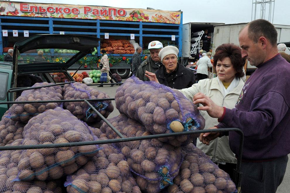 рынок осенью, фото