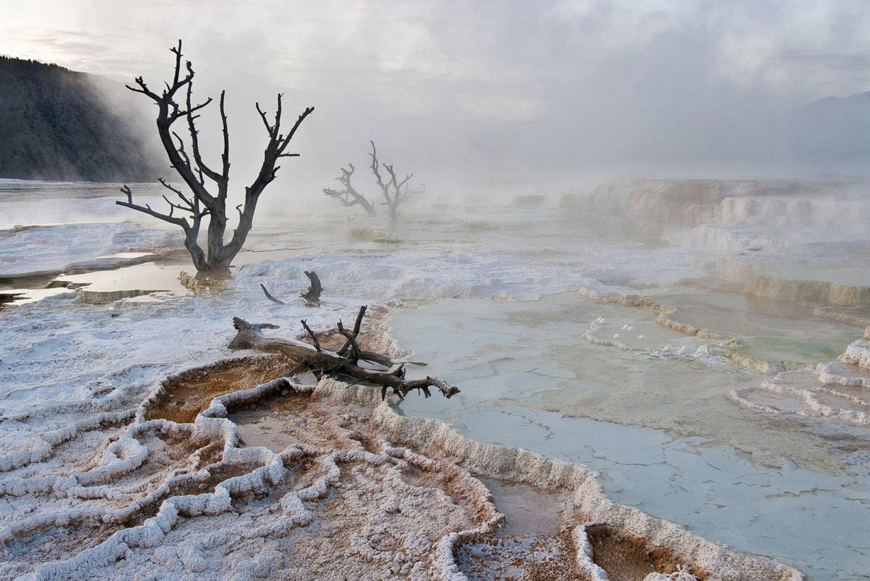 пар в Национальном парке Йеллоустон, Фотоконкурс