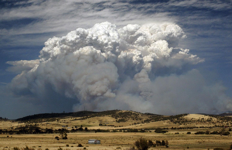 Лесные пожары, Фотоконкурс