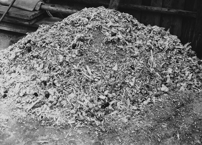 Куча пепла и костей в концлагере Бухенвальд, фото