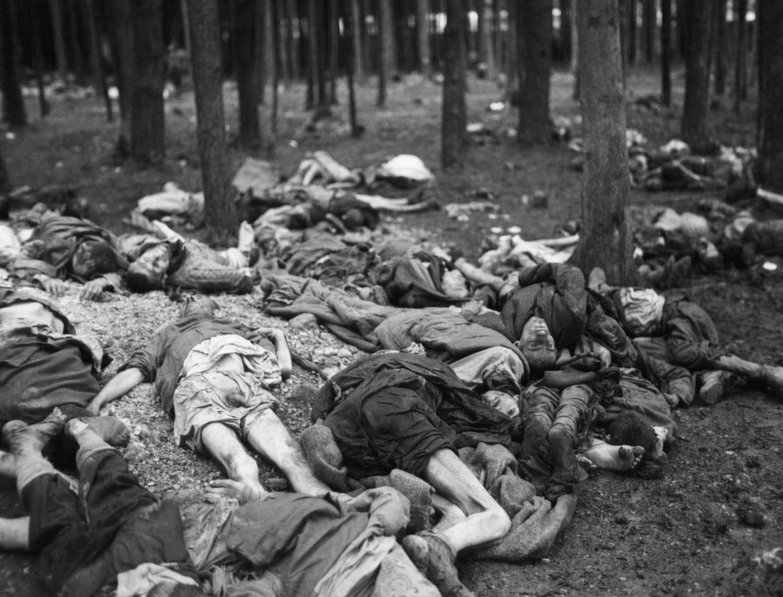 тела жертв нацистских репрессий