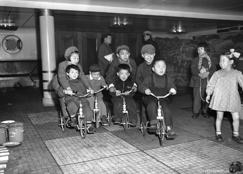 Дети катаются на трехколесных велосипедах
