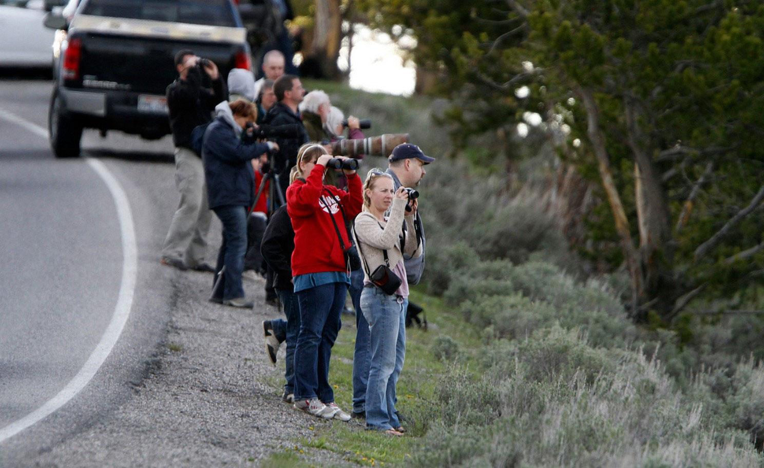туристы за фотосессией