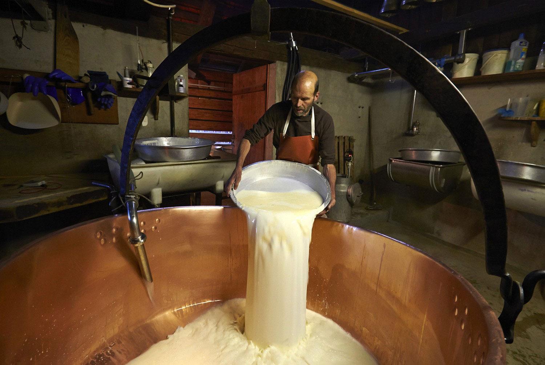 наливание молока в чан