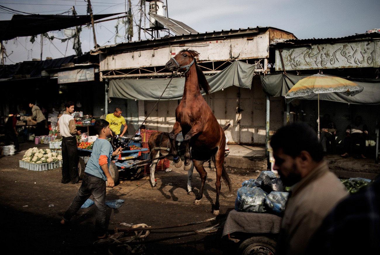 на центральном рынке в городе Газа