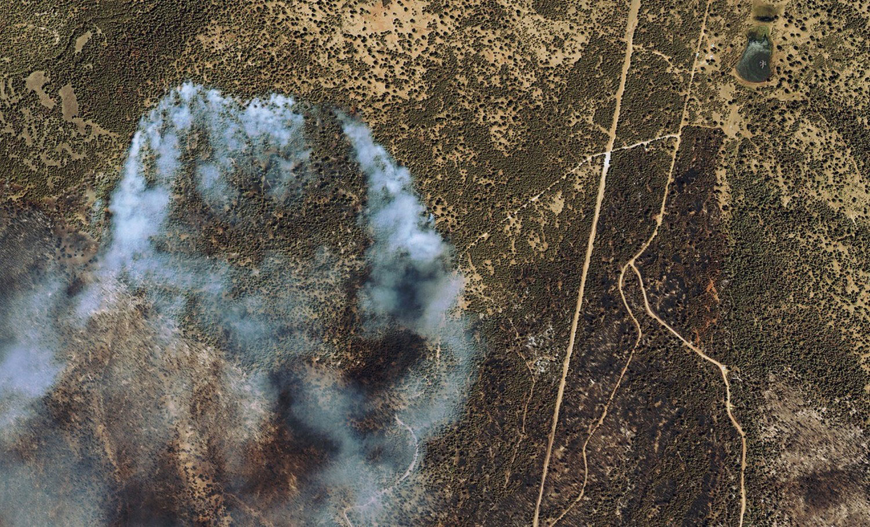 лесной пожар в США, фото