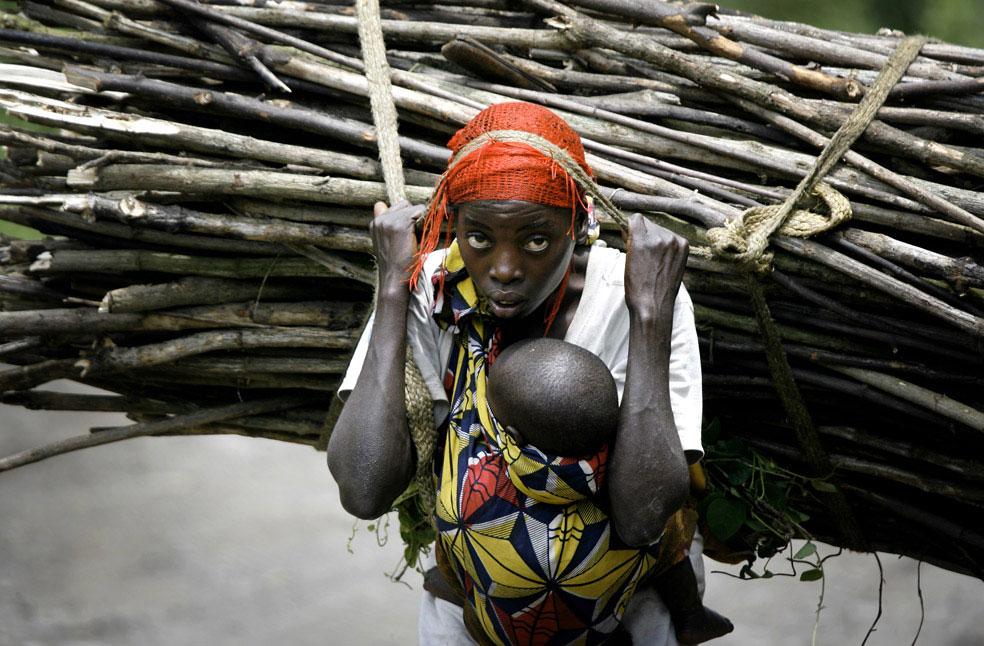 женщина несет хворост на продажу, Конго, фото