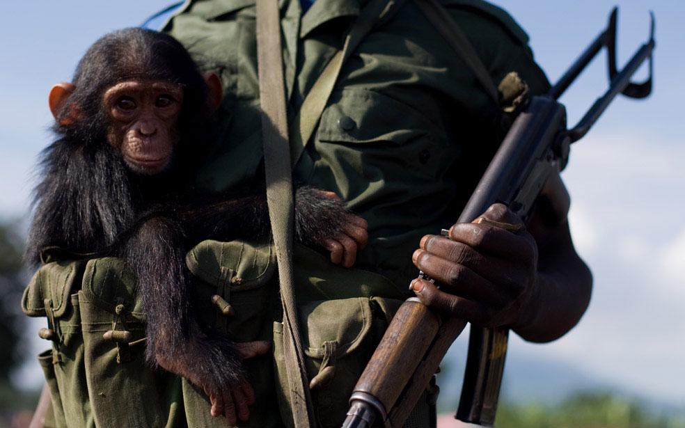 Конголезский солдат, Конго, фото