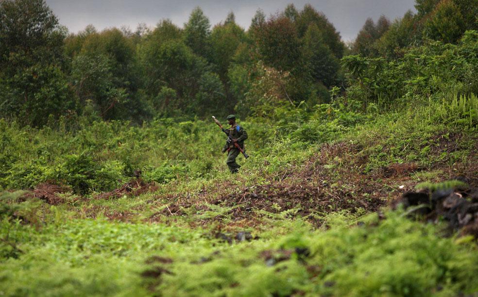 Конголезский солдат на линии фронта, Конго, фото