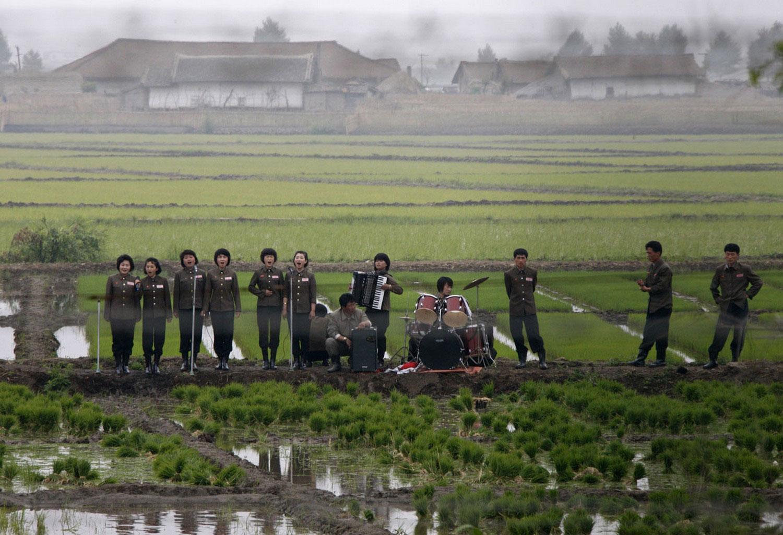 музыканты в поле, фото