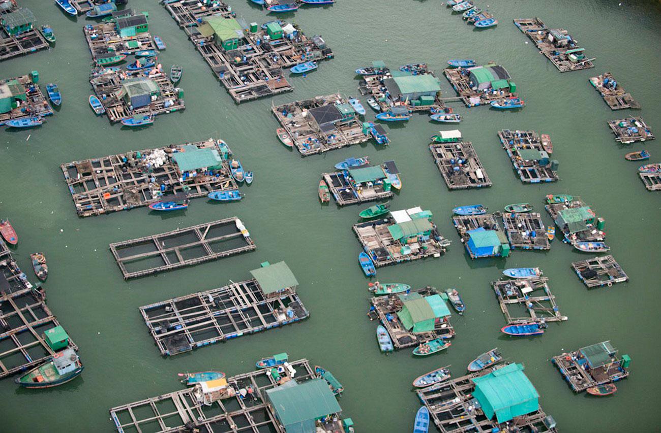 Рыбная ферма в Китае, пейзаж