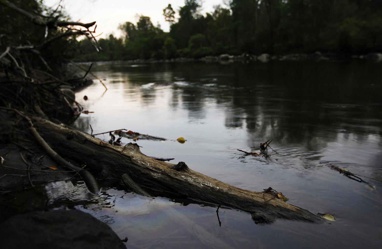 Слой нефти на поверхности реки